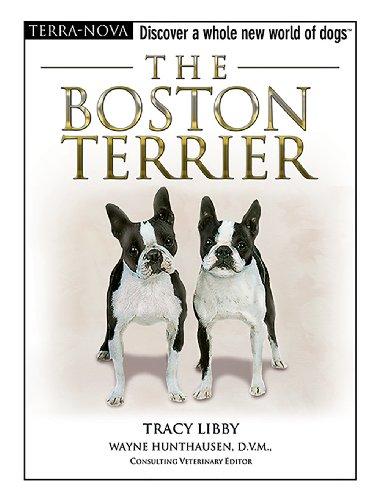 The Boston Terrier [With Dog Training DVD] (Terra-nova)