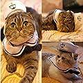 GODHL GODHL Pet Supplies Dog Cat Puppy Adjustable collar Outfit Costume Hat Cape 2pcs