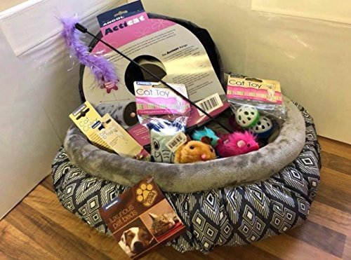 Luxury Cat Hamper