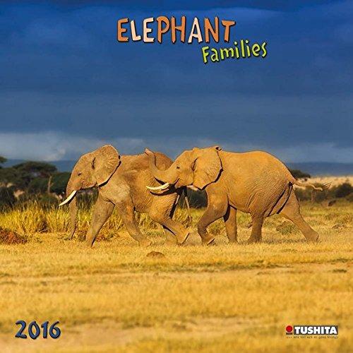 elephant-families-2016