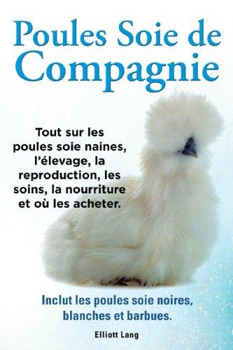 Poules soie de compagnie. Tout sur les Poules soie naines, llevage, la reproduction, les soins, la nourriture et o les acheter. Inclut les Poules soie noires, blanches et barbues.