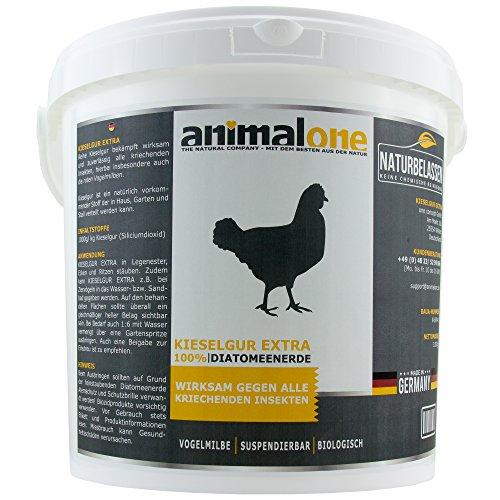 animalone - KIESELGUR EXTRA 10 L Eimer Milben Stop für Hühner & Geflügel gegen alle kriechenden Insekten, Schädlinge & Milben