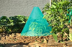 Intermas Lot de 3 cônes de forçage GREEN-STARTER 25