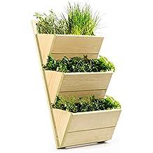 macetero de una estantera para colgar en la pared para cultivar o mostrar plantas