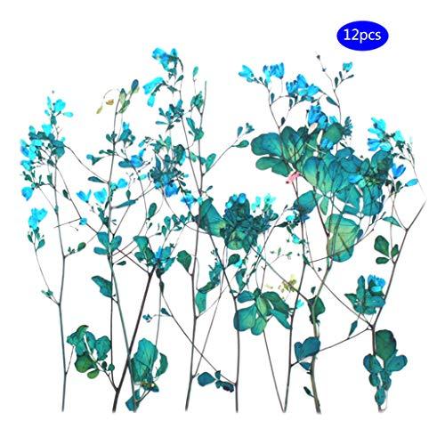 12 Teile/Satz Trockene Blume DIY Kunsthandwerk Epoxidharz Werkzeuge Schmuck Machen Füllung Blumen 7 Farben Optional