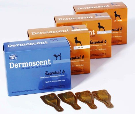 Dermoscent - Esencial 6 para Perros de Menos de 10 kg