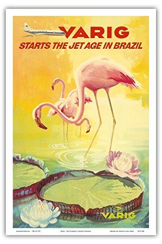 bresil-varig-commence-lere-du-jet-au-bresil-flamants-roses-flamingo-rosados-pataugent-dans-un-etang-