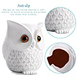 Owl Statue Crafted Guard Station,Perfect Accessory for Amazon Echo Dot 2nd and 1st generation Speaker - BFF For Alexa - Nice Decoration and Success Gift