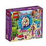 LEGO-Friends-Larea-gioco-del-criceto-di-Olivia-41383