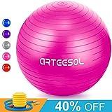 Arteesol Palla Di Esercizio Anti-Scivolo, 65cm / 75cm Anti-Scoppio Sfera d'equilibrio per fitness resistente a palla Yoga Yoga con pompa rapida per la forza del nucleo