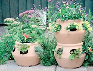stewart pot fraisier herbes aromatiques pot jardin. Black Bedroom Furniture Sets. Home Design Ideas