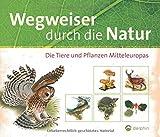 Wegweiser durch die Natur: Die Tiere und Pflanzen Mitteleuropas