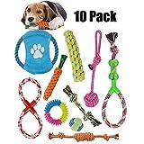 ANDSTON 10 stücke Haustier Hund Spielzeug Durable Puppy Pet Seil Kauen Spielzeug Set ungiftig Material Lebendige Farben Attraktives Design für Hunde