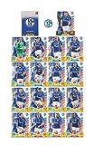 Match Attax Bundesliga 2017 2018 - FC Schalke 04 Mannschafts-Set 18 Karten Basiskarten Clubkarte Starspieler - Deutsche Ausgabe