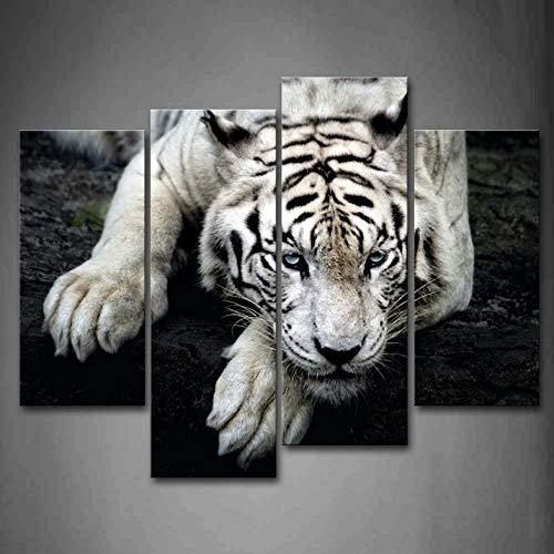 4 Panels gerahmte Wandkunst Bilder White Tiger Rock Leinwand drucken Moderne Tier Poster Frames für Wohnzimmer Dekor - 30x60x2 30x80x2 (Wandtattoo White Tiger)