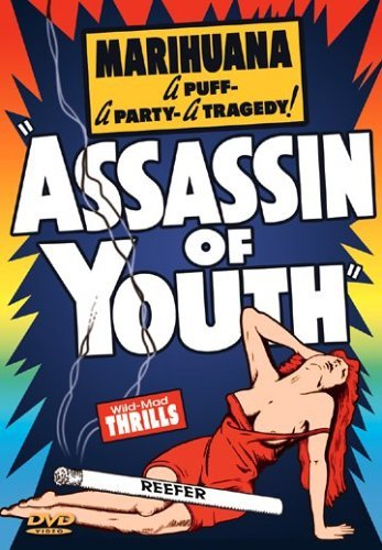 Assassin of Youth by Luana Walters