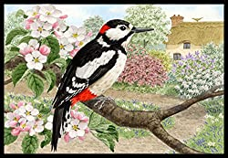 Carolines Treasures ASA2175MAT Woodpecker Indoor or Outdoor Mat, 18 x 27, Multicolor