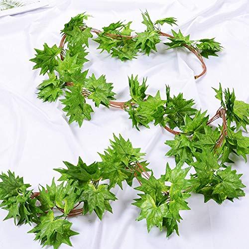 Grüner Pflanzen, 6.2ft