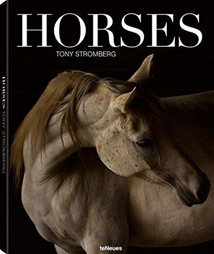 Horses por Tony Stromberg