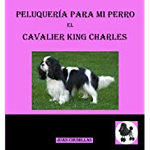 cavalier king (peluquería para mi perro)