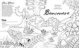 Biancaneve-Colouring-book-dai-fratelli-Grimm-Con-poster-Ediz-illustrata