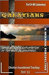 Galatians Verse by Verse Explanation: A Hebraic Perspective (Teachings Series Book 7) (English Edition)