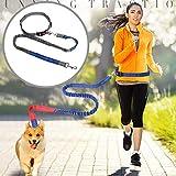 Fantasyworld Pet Dog Leash Walking Formazione guinzaglio Gatti Cani Cablaggio del guinzaglio del Collare Cinghia Jogging Corda Piombo Regolabile in Nylon Belt