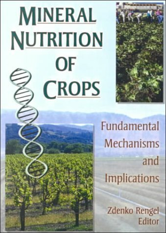 mineral-nutrition-of-crops-fundamental-mechanisms-and-implications-1st-edition-by-rengel-zdenko-2000-paperback