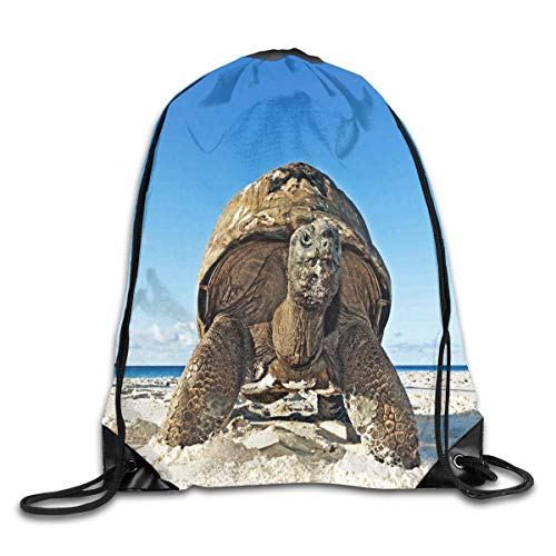 uykjuykj Tunnelzug Rucksäcke, Drawstring Backpack Bag Huge Sea Turtle On The Beach Rucksack for Travel Color 01 Lightweight Unique 17x14 IN (Converse 50er Jahre)