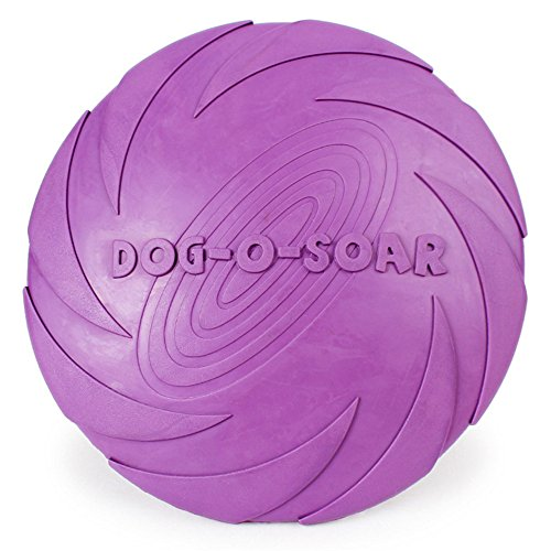 Payxuan Frisbee per Cane