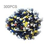 Universal-Auto-Körper-Ordnungs-Formungs-Klipp-Plastikdruck-Zurückhaltungs-Stift-Niet-Befestiger Platten-Halterungs-Klammer-Zusammenstellungs-Installationssatz - Mischungs-Farbe