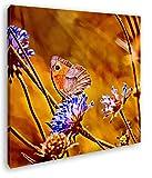 deyoli Atemberaubende Blumenwiese Format: 40x40 Effekt: Zeichnung als Leinwandbild, Motiv auf Echtholzrahmen, Hochwertiger Digitaldruck mit Rahmen, Kein Poster oder Plakat