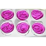 Rose Stabilizzate Medie D. 4.5 Pz 6 (FUCSIA)
