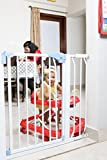 Baby Gates - Best Reviews Guide