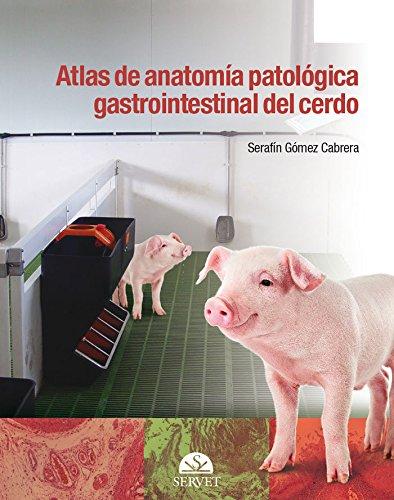 Descargar Libro Atlas de anatomía patológica gastrointestinal del cerdo de Serafín Gómez Cabrera