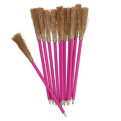12 Bleistift Besen