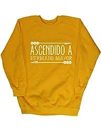 HippoWarehouse ASCENDIDO A HERMANO MAYOR jersey sudadera suéter derportiva unisex niños niñas