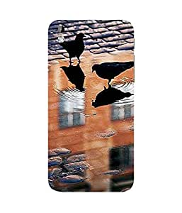 Pigeon Chilling Htc Desire 816 Case