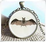Fledermaus Anhänger Halskette Schmuck, Fledermaus Foto Schmuck Glas Anhänger