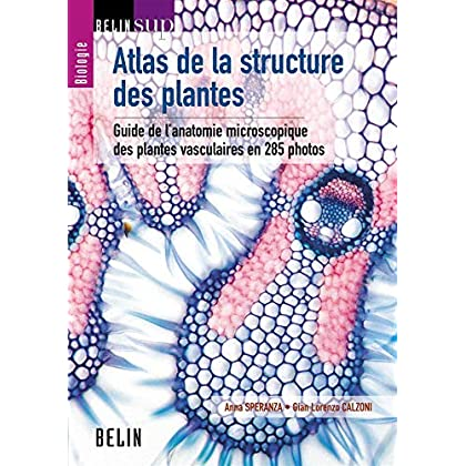 Atlas de la structure des plantes : Guide de l'anatomie microscopique des plantes vasculaires en 285 photos