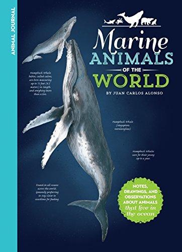 Animal Journal: Marine Animals of the World