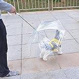 Utile ombrello trasparente per piccolo cane, ombrello da pioggia in poliuretano espanso con guinzaglio che mantiene l'animale asciutto confortevole durante piogge o nevicate