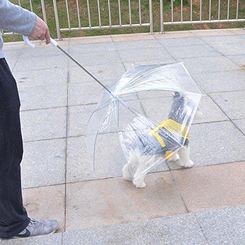 Paraguas pequeño para mascotas de polietileno transparente, con cadena integrada