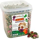 petifool Nager-Ergänzungsfutter 'Blütenzauber', natürliches und gesundes Kaninchenfutter, 1er Pack (1 x 360 g)
