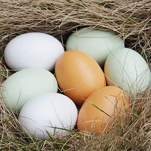 Uovo di simulazione di pollo in legno Anatra Oca Dummy bambini dipinto uovo di giocattoli educativi artificiale alimentari giocattoli 6pcs bambini giocattoli novelli