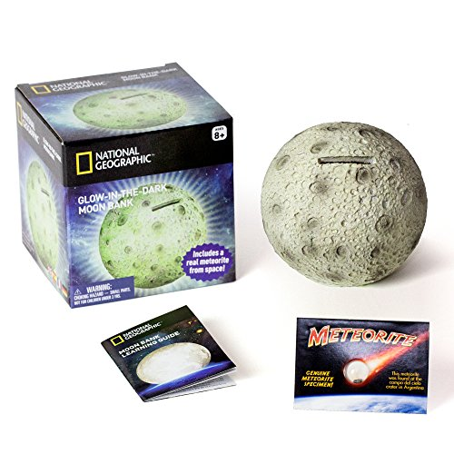 Glowing Moon Money Bank