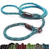 Friends Forever Haltbare Hund Slip Seil Leine Hundeleine - Premium Qualität Klettern führen stabile Unterstützung Pull für große und mittelgroße Pet 1.8m, blau