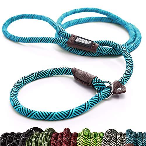 Friends Forever Haltbare Hund Slip Seil Leine Hundeleine - Premium Qualität Klettern führen stabile Unterstützung Pull für große und mittelgroße Pet 1.8m, blau Leinen Slip