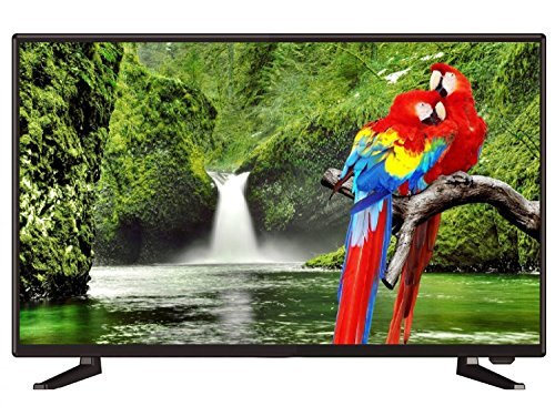 POWEREYE PLED 024TL 24 Inches HD Ready LED TV
