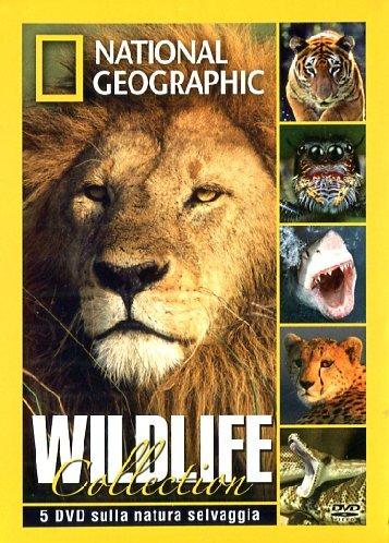 wildlife-collection